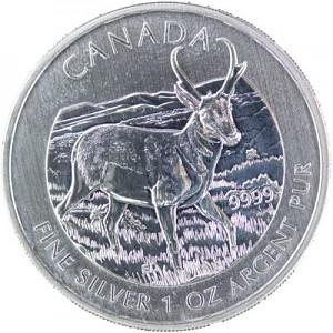 Canadian Wildlife Pronghorn Antelope 1oz Silver - 2013 - B-Stock