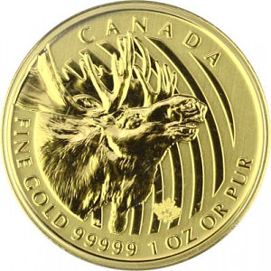 Call of the Wild - Moose 1oz Gold - 2019