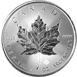Maple Leaf 1oz Silver - 2019 Incuse