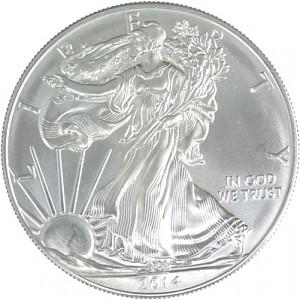 American Eagle 1oz Silver